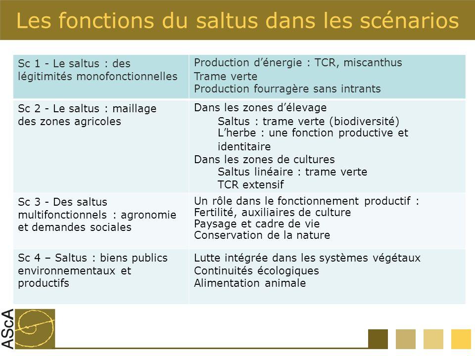 Les fonctions du saltus dans les scénarios Sc 1 - Le saltus : des légitimités monofonctionnelles Production dénergie : TCR, miscanthus Trame verte Pro