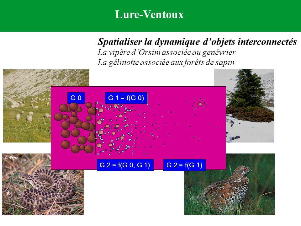 Lure-Ventoux Spatialiser la dynamique dobjets interconnectés La vipère dOrsini associée au genévrier La gélinotte associée aux forêts de sapin G 2 = f