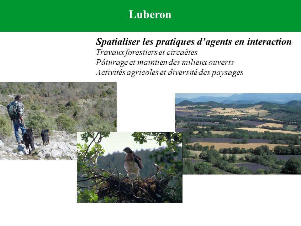 Luberon Spatialiser les pratiques dagents en interaction Travaux forestiers et circaètes Pâturage et maintien des milieux ouverts Activités agricoles