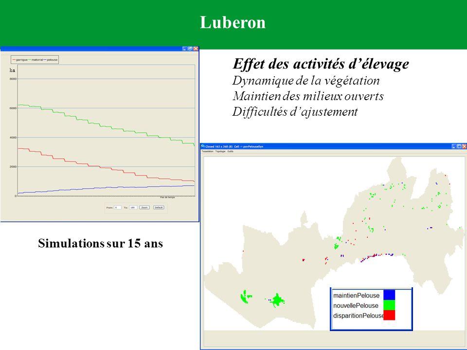 Simulations sur 15 ans ha Luberon Effet des activités délevage Dynamique de la végétation Maintien des milieux ouverts Difficultés dajustement
