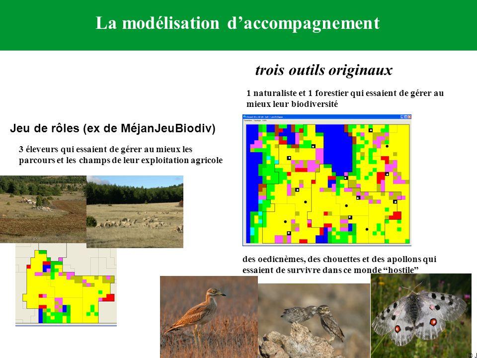 La modélisation daccompagnement trois outils originaux Jeu de rôles (ex de MéjanJeuBiodiv) 1 naturaliste et 1 forestier qui essaient de gérer au mieux