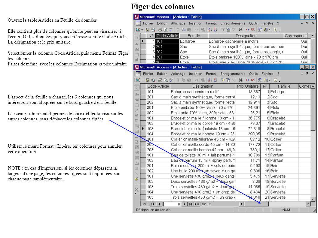 Figer des colonnes Ouvrez la table Articles en Feuille de données Elle contient plus de colonnes qu on ne peut en visualiser à l écran.