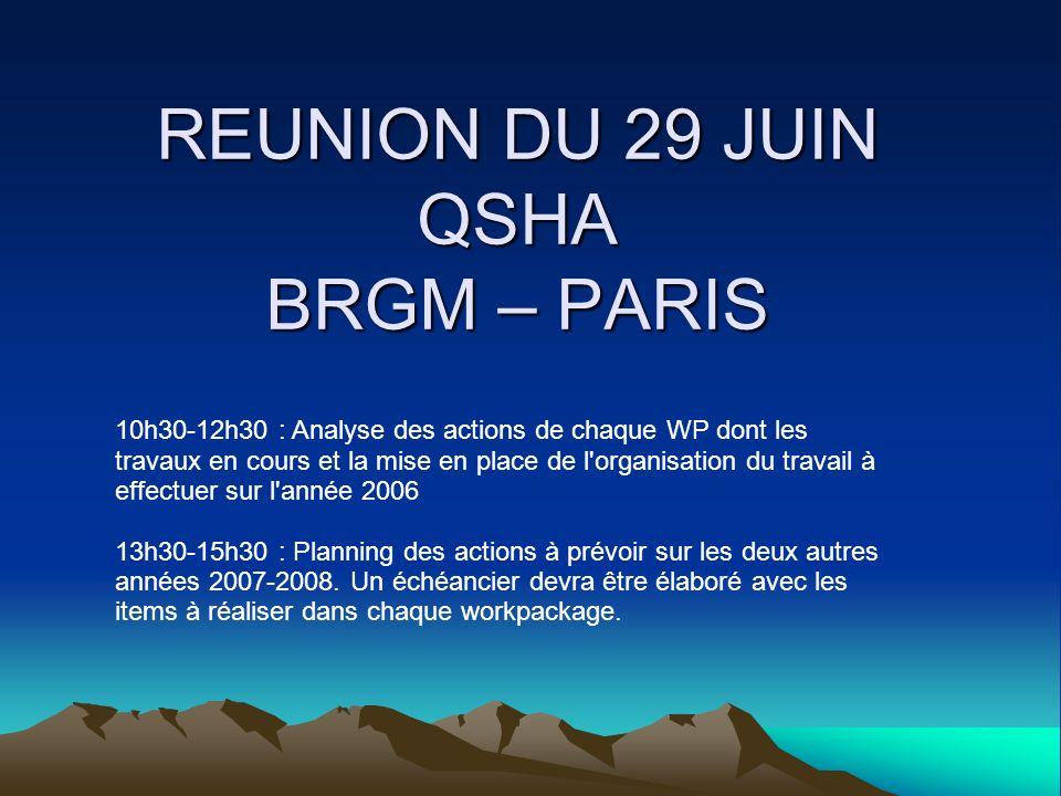 REUNION DU 29 JUIN QSHA BRGM – PARIS 10h30-12h30 : Analyse des actions de chaque WP dont les travaux en cours et la mise en place de l organisation du travail à effectuer sur l année 2006 13h30-15h30 : Planning des actions à prévoir sur les deux autres années 2007-2008.