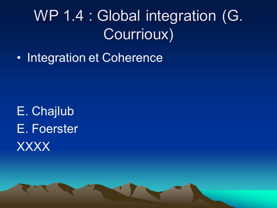 WP 1.4 : Global integration (G. Courrioux) Integration et Coherence E. Chajlub E. Foerster XXXX