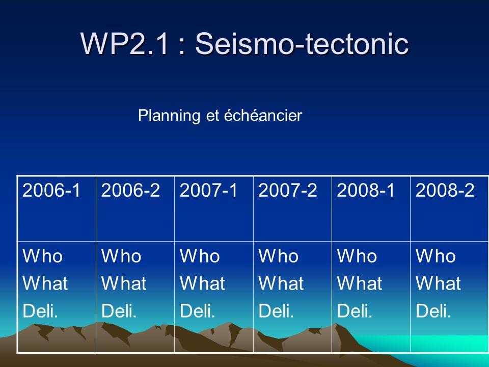 WP2.1 : Seismo-tectonic 2006-12006-22007-12007-22008-12008-2 Who What Deli.