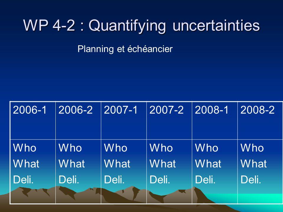 WP 4-2 : Quantifying uncertainties 2006-12006-22007-12007-22008-12008-2 Who What Deli.