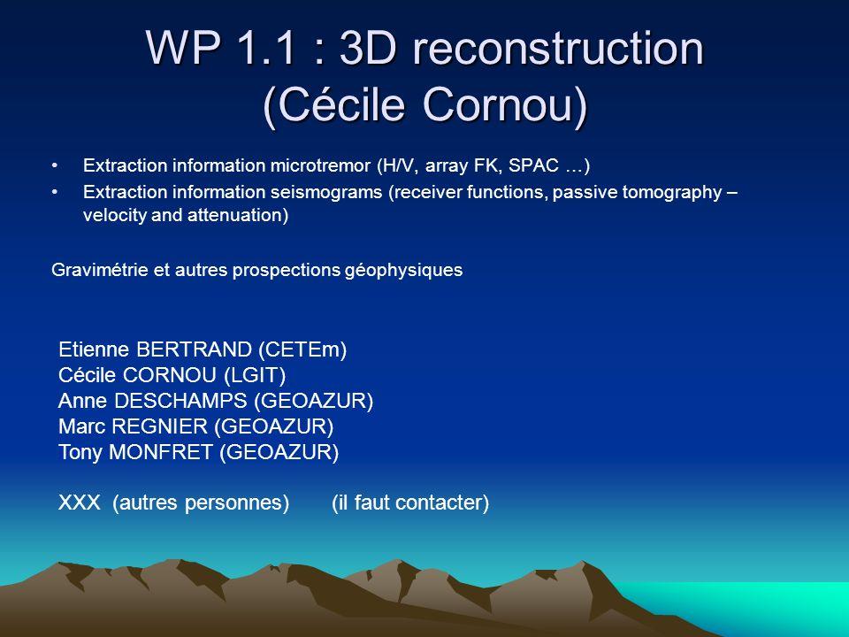 WP 1.1 : 3D reconstruction (Cécile Cornou) Extraction information microtremor (H/V, array FK, SPAC …) Extraction information seismograms (receiver functions, passive tomography – velocity and attenuation) Gravimétrie et autres prospections géophysiques Etienne BERTRAND (CETEm) Cécile CORNOU (LGIT) Anne DESCHAMPS (GEOAZUR) Marc REGNIER (GEOAZUR) Tony MONFRET (GEOAZUR) XXX (autres personnes) (il faut contacter)