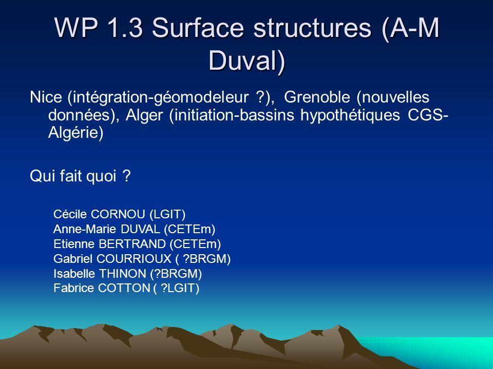 WP 1.3 Surface structures (A-M Duval) Nice (intégration-géomodeleur ?), Grenoble (nouvelles données), Alger (initiation-bassins hypothétiques CGS- Algérie) Qui fait quoi .