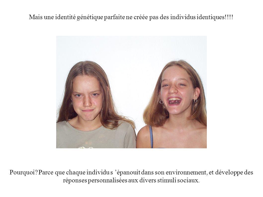 Mais une identité génétique parfaite ne créée pas des individus identiques!!!! Pourquoi? Parce que chaque individu s épanouit dans son environnement,