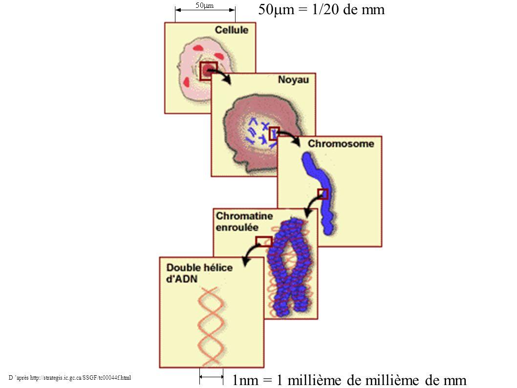 D après http://strategis.ic.gc.ca/SSGF/tc00044f.html 1nm = 1 millième de millième de mm 50 m = 1/20 de mm