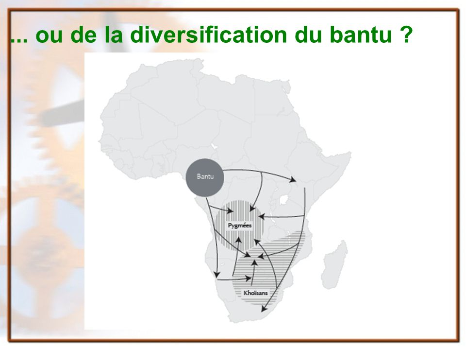 ... ou de la diversification du bantu