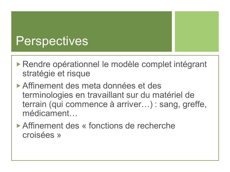 Perspectives Rendre opérationnel le modèle complet intégrant stratégie et risque Affinement des meta données et des terminologies en travaillant sur d