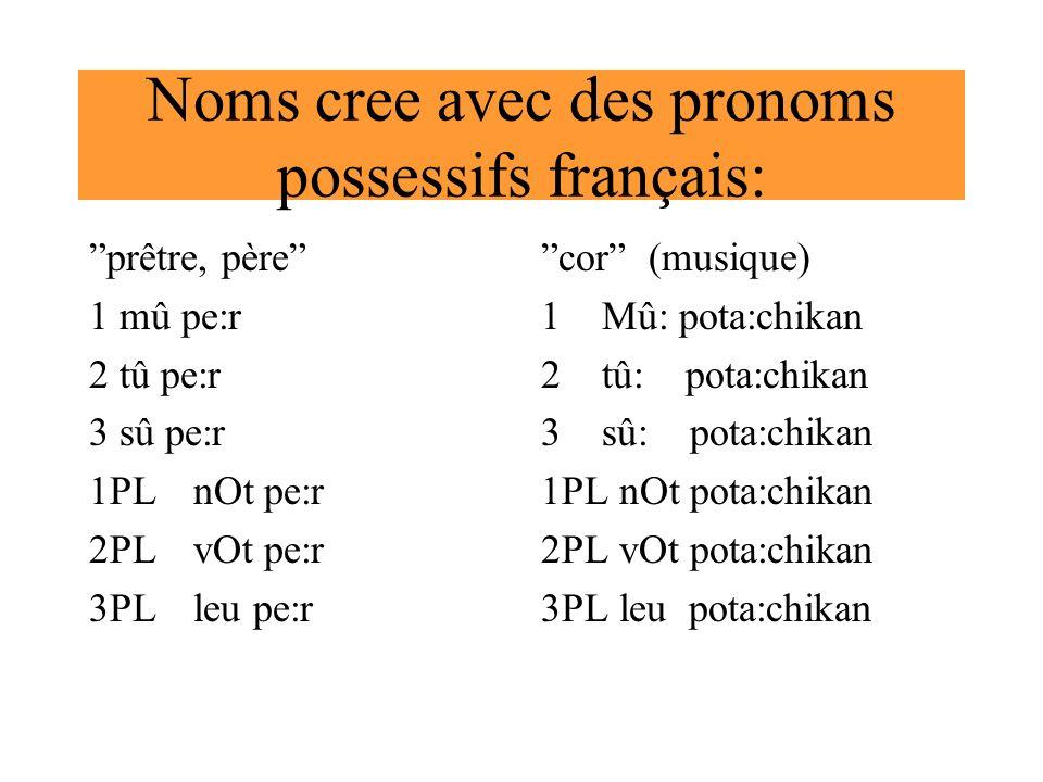 Noms cree avec des pronoms possessifs français: prêtre, père 1 mû pe:r 2 tû pe:r 3 sû pe:r 1PLnOt pe:r 2PLvOt pe:r 3PLleu pe:r cor (musique) 1Mû: pota