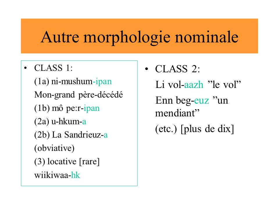 Autre morphologie nominale CLASS 1: (1a) ni-mushum-ipan Mon-grand père-décédé (1b) mô pe:r-ipan (2a) u-hkum-a (2b) La Sandrieuz-a (obviative) (3) loca