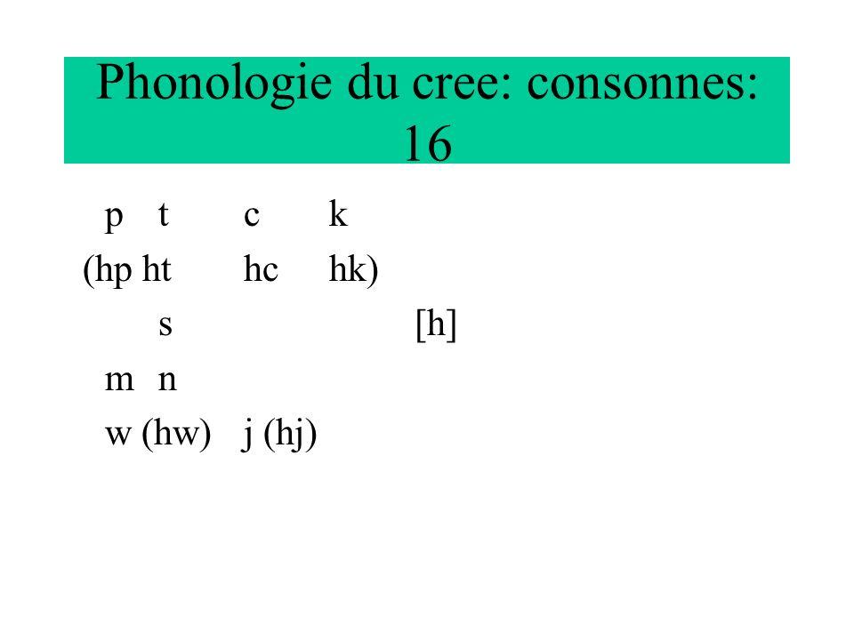 Phonologie du cree: consonnes: 16 ptck (hp hthchk) s[h] mn w (hw)j (hj)