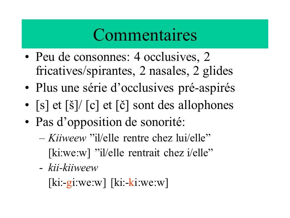 Commentaires Peu de consonnes: 4 occlusives, 2 fricatives/spirantes, 2 nasales, 2 glides Plus une série docclusives pré-aspirés [s] et [š]/ [c] et [č]