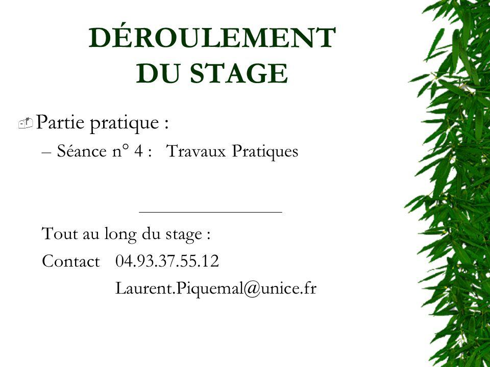 DÉROULEMENT DU STAGE Partie pratique : –Séance n° 4 : Travaux Pratiques Tout au long du stage : Contact 04.93.37.55.12 Laurent.Piquemal@unice.fr