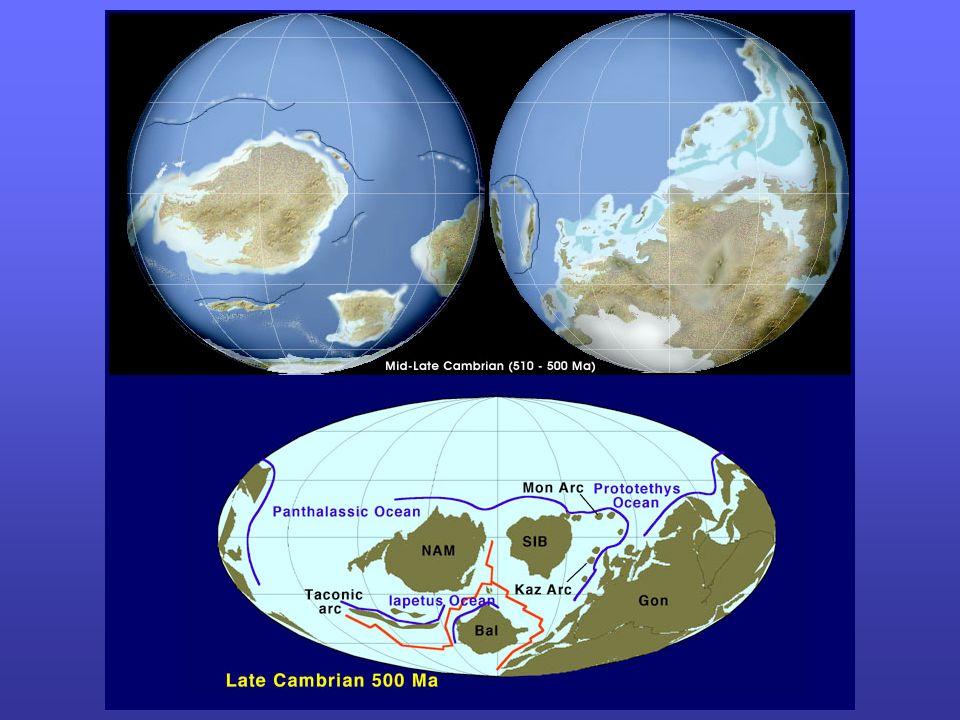 Crises (extinctions massives)