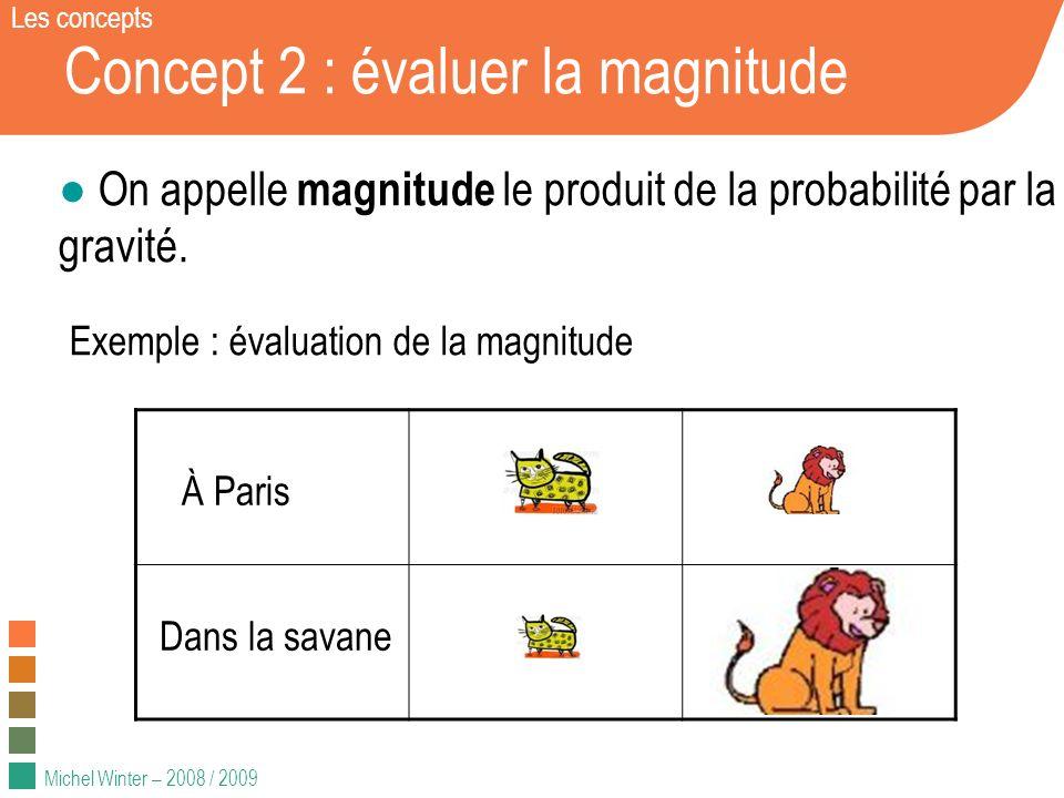 Michel Winter – 2008 / 2009 Concept 2 : évaluer la magnitude On appelle magnitude le produit de la probabilité par la gravité. Exemple : évaluation de