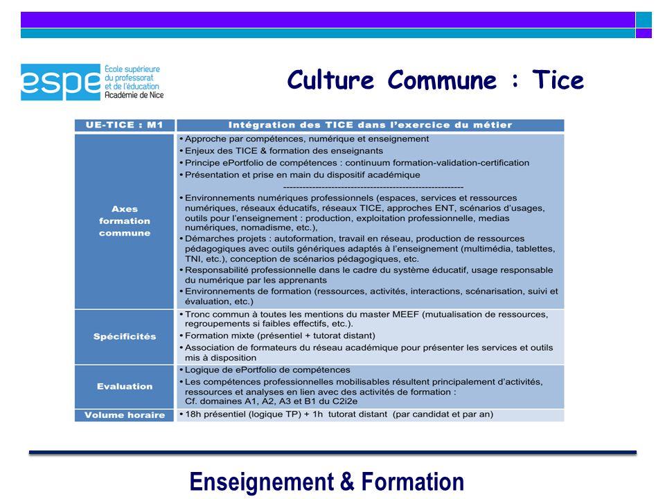 Enseignement & Formation Culture Commune : Tice
