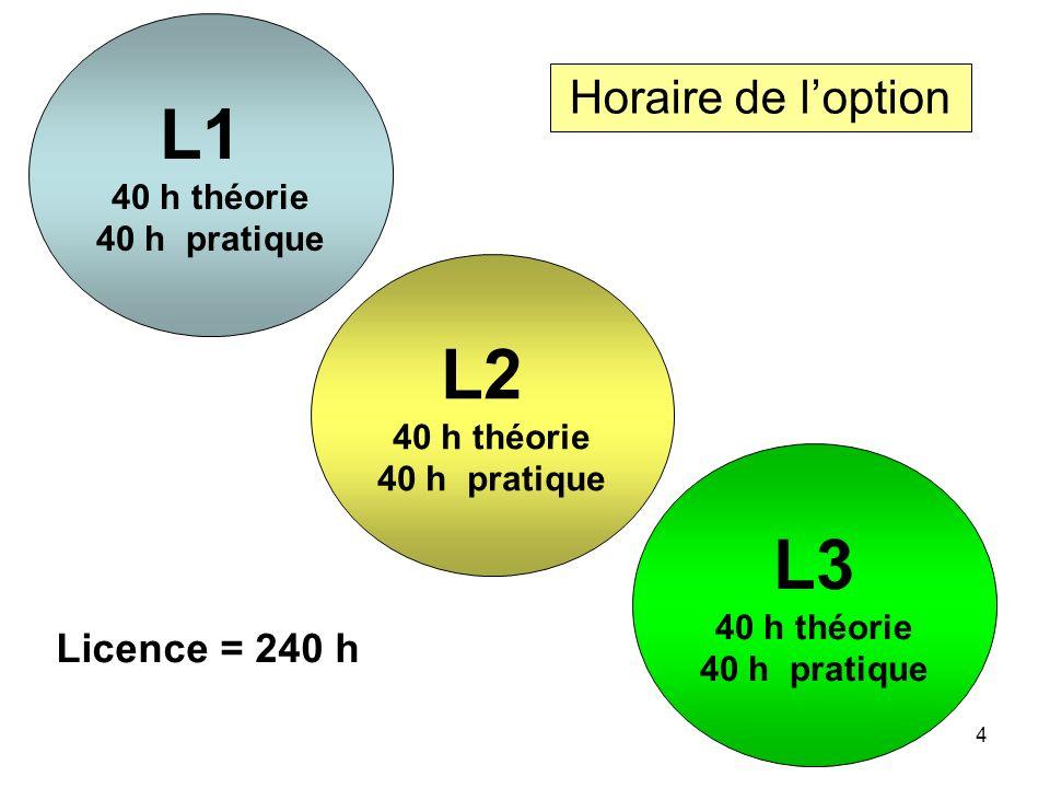 4 Horaire de loption L1 40 h théorie 40 h pratique L2 40 h théorie 40 h pratique L3 40 h théorie 40 h pratique Licence = 240 h