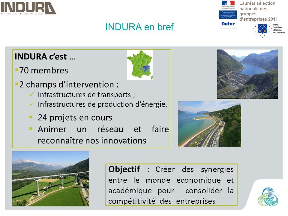 INDURA cest … 70 membres 2 champs dintervention : Infrastructures de transports ; Infrastructures de production dénergie.