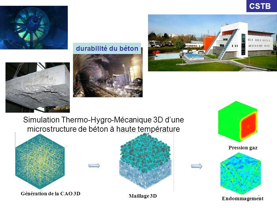 6 Génération de la CAO 3D Maillage 3D Endommagement Simulation Thermo-Hygro-Mécanique 3D dune microstructure de béton à haute température Pression gaz