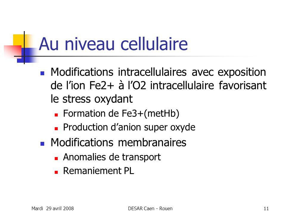 Mardi 29 avril 2008DESAR Caen - Rouen11 Au niveau cellulaire Modifications intracellulaires avec exposition de lion Fe2+ à lO2 intracellulaire favoris