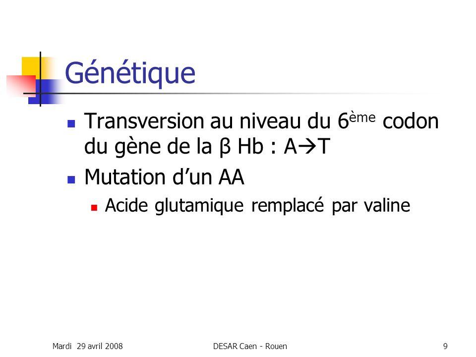 Mardi 29 avril 2008DESAR Caen - Rouen9 Génétique Transversion au niveau du 6 ème codon du gène de la β Hb : A T Mutation dun AA Acide glutamique rempl