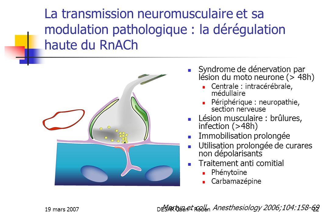 19 mars 2007DESAR Caen - Rouen22 La transmission neuromusculaire et sa modulation pathologique : la dérégulation haute du RnACh Syndrome de dénervatio
