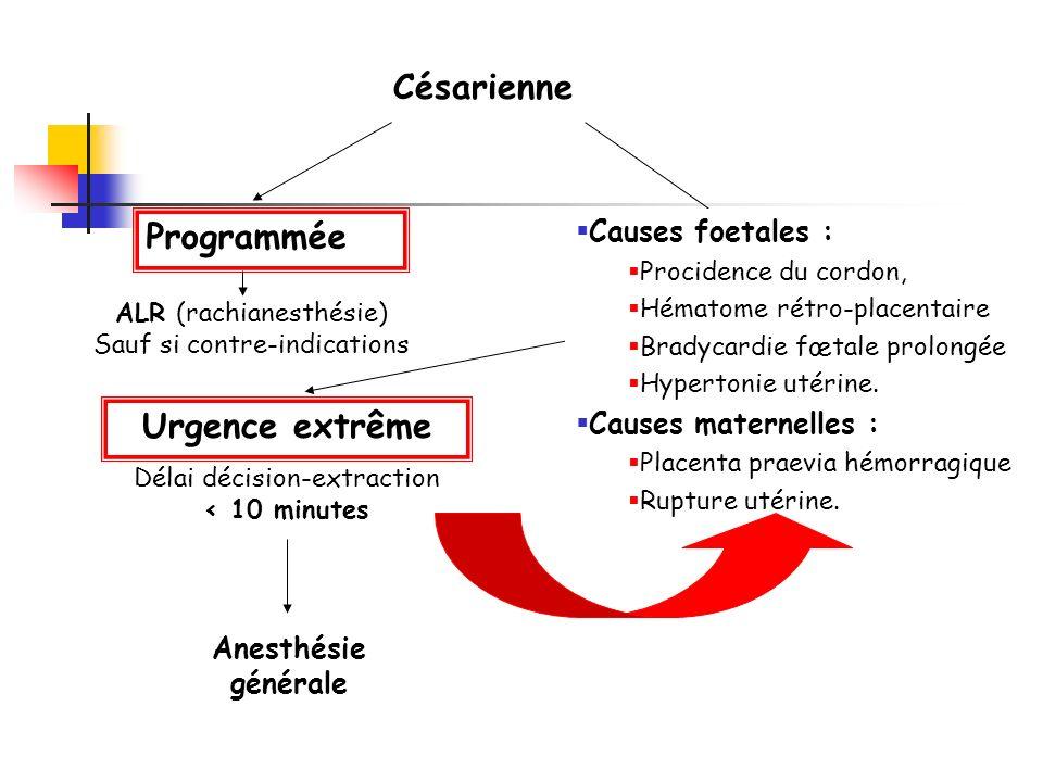 Césarienne Programmée Urgente ALR (rachianesthésie) Sauf si contre-indications Délai décision-extraction < 10 minutes Délai décision-extraction > 10 m