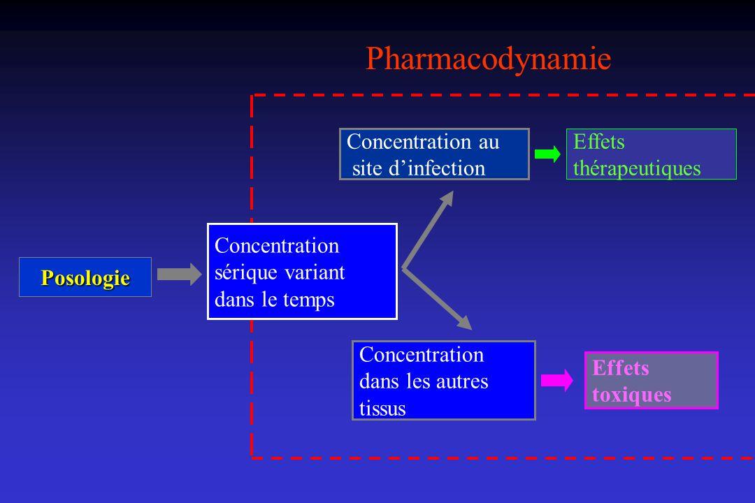 Bactéricidie concentration dépendante : exemple avec les aminoglycosides 1/4 x CMI 2 2 x CMI 4 x CMI Netilmicine 8 x CMI 3 4 5 6 7 8 9 0 123 4Heures Log10 unités formant colonies/mL 1 x CMI 1/2 x CMI Contrôle