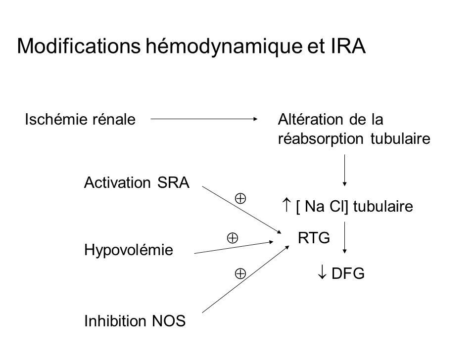 Modifications hémodynamique et IRA Ischémie rénaleAltération de la réabsorption tubulaire [ Na Cl] tubulaire DFG RTG Activation SRA Hypovolémie Inhibi