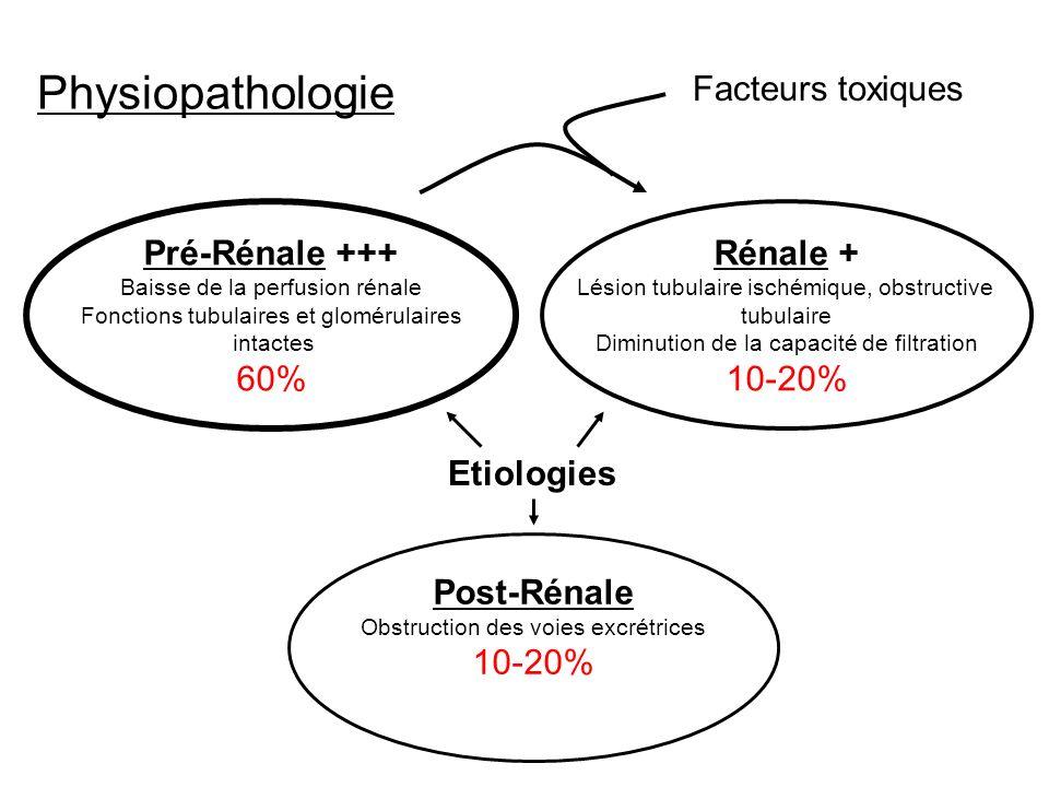 Post-Rénale Obstruction des voies excrétrices 10-20% Rénale + Lésion tubulaire ischémique, obstructive tubulaire Diminution de la capacité de filtrati