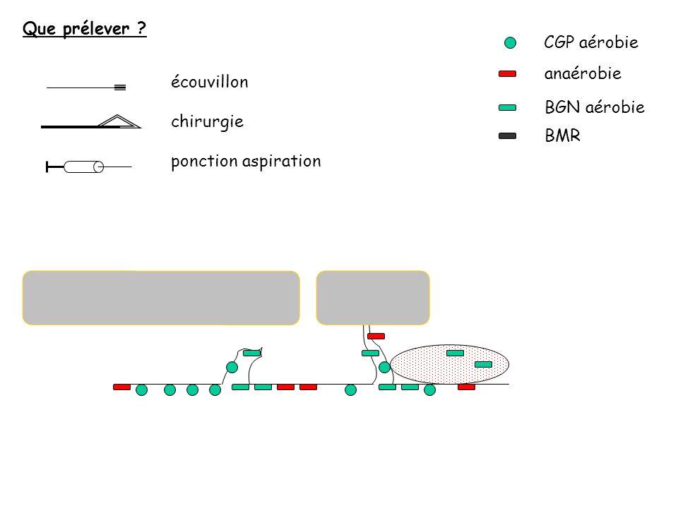 CGP aérobie anaérobie BGN aérobie BMR écouvillon chirurgie ponction aspiration Que prélever ?