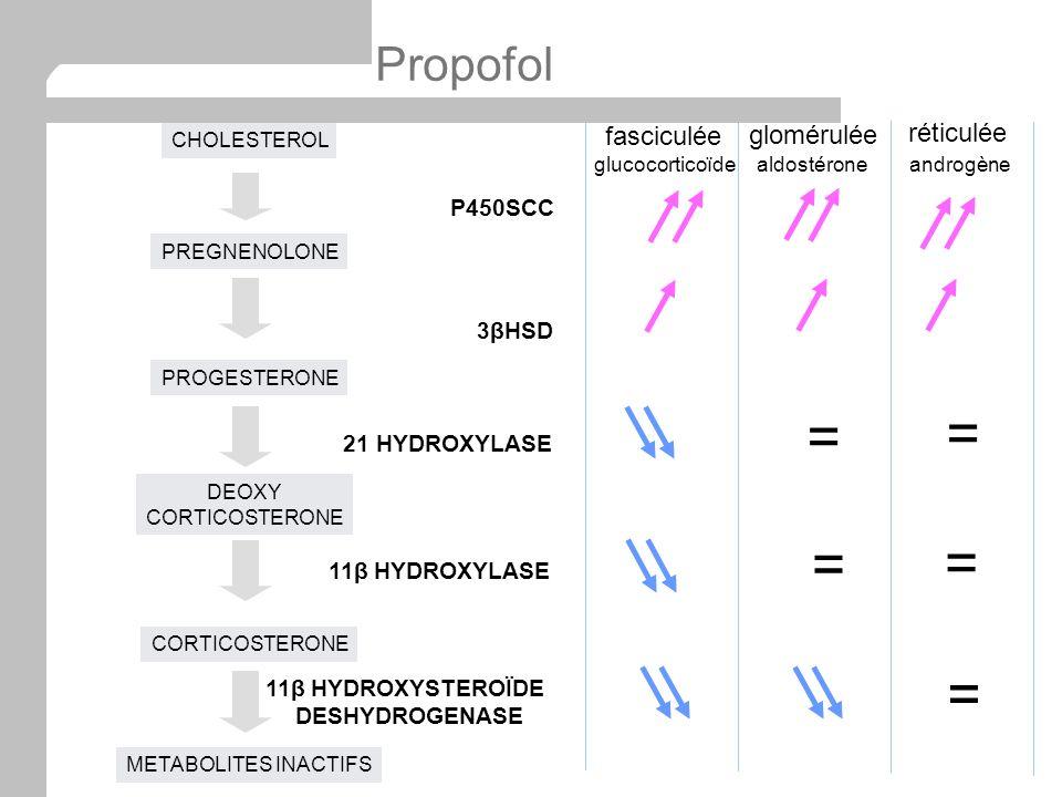 fasciculée glomérulée réticulée = = glucocorticoïdealdostéroneandrogène = = = CHOLESTEROL PROGESTERONE DEOXY CORTICOSTERONE PREGNENOLONE P450SCC 3βHSD