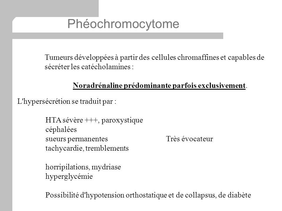 Phéochromocytome Tumeurs développées à partir des cellules chromaffines et capables de sécréter les catécholamines : Noradrénaline prédominante parfoi