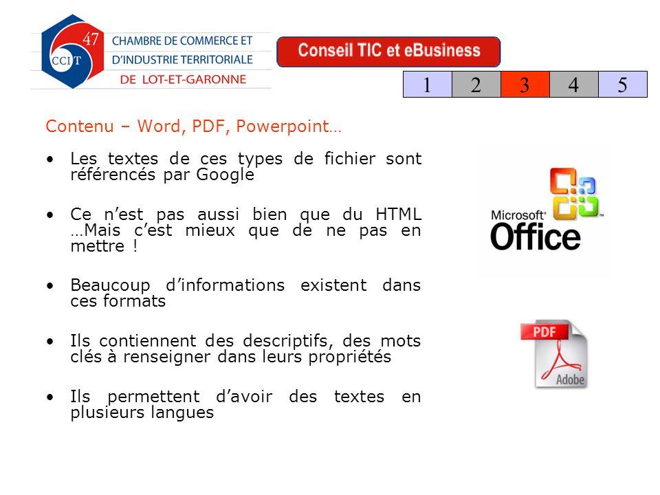 Contenu – Word, PDF, Powerpoint… Les textes de ces types de fichier sont référencés par Google Ce nest pas aussi bien que du HTML …Mais cest mieux que de ne pas en mettre .