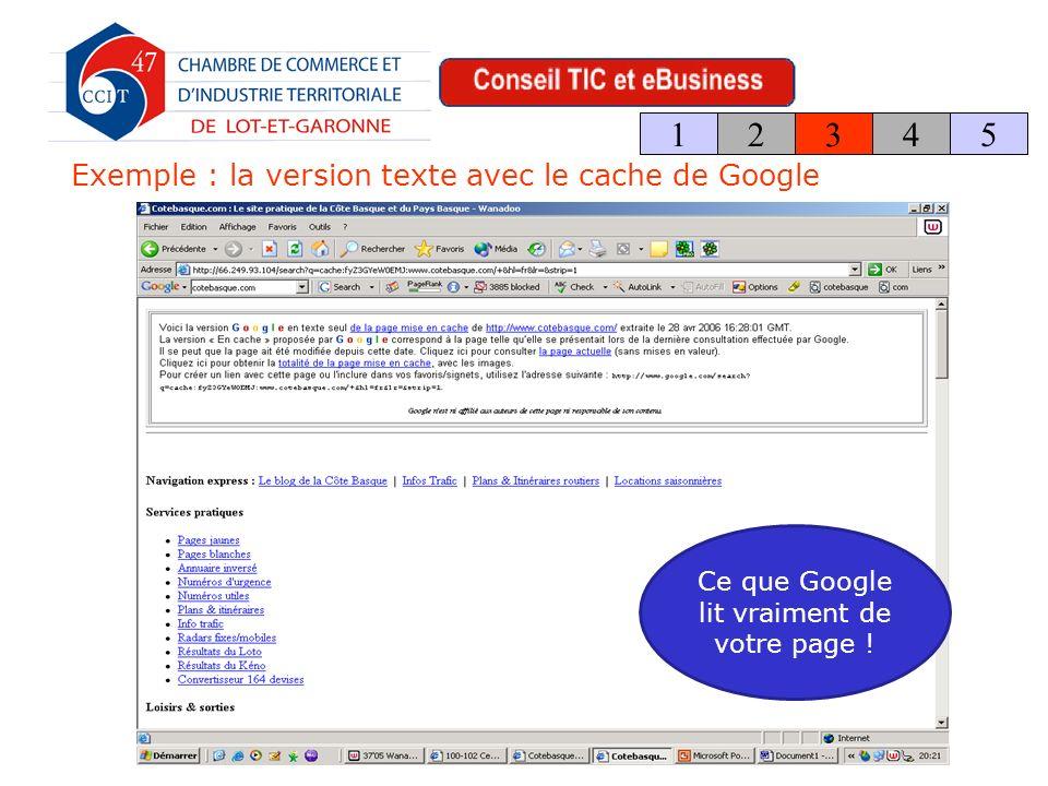 Exemple : la version texte avec le cache de Google 123 4 5 Ce que Google lit vraiment de votre page !