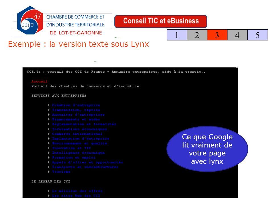 Exemple : la version texte sous Lynx 123 4 5 Ce que Google lit vraiment de votre page avec lynx