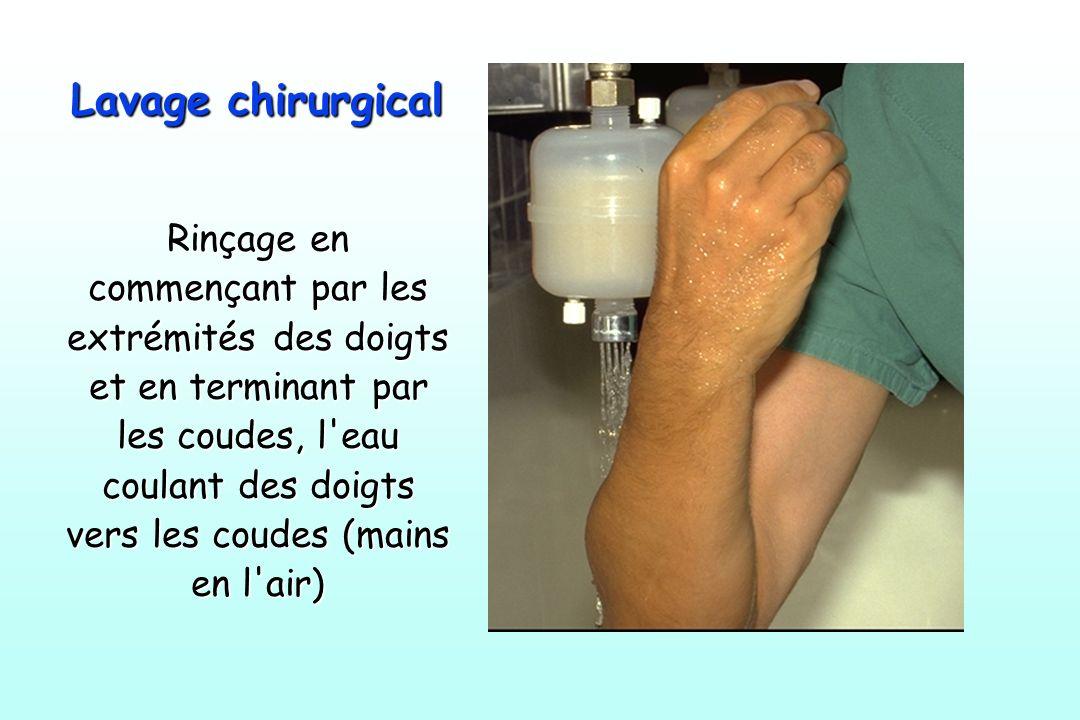 Lavage chirurgical Rinçage en commençant par les extrémités des doigts et en terminant par les coudes, l'eau coulant des doigts vers les coudes (mains
