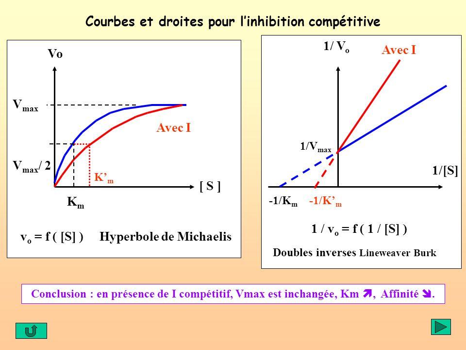 Courbes et droites pour linhibition compétitive v o = f ( [S] ) Hyperbole de Michaelis 1 / v o = f ( 1 / [S] ) Doubles inverses Lineweaver Burk Avec I