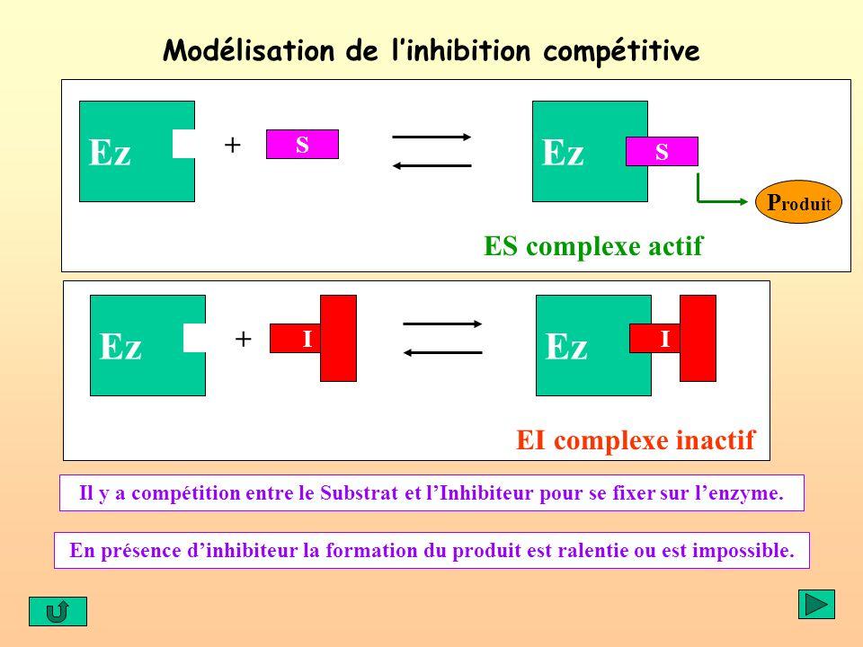 Modélisation de linhibition compétitive Ez S ES complexe actif Ez + I EI complexe inactif Ez I + S P roduit Il y a compétition entre le Substrat et lI