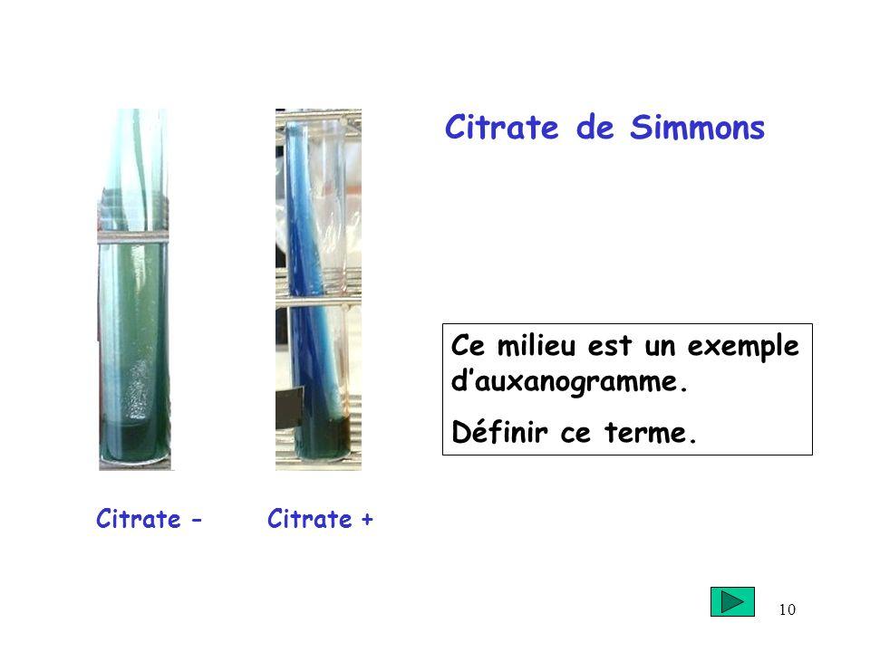 10 Citrate de Simmons Citrate - + Ce milieu est un exemple dauxanogramme. Définir ce terme.