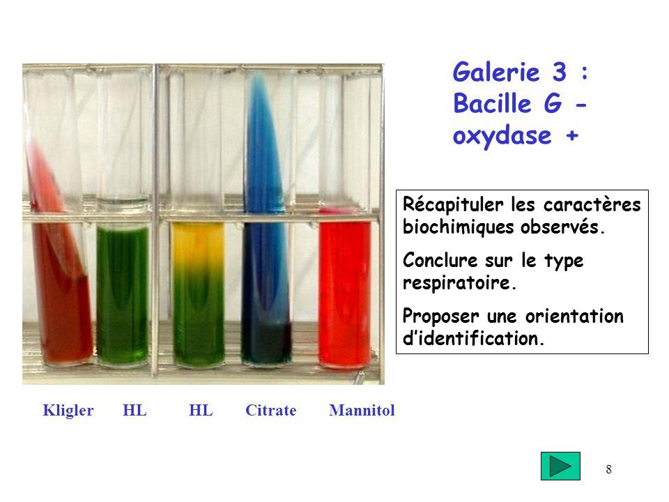 8 Galerie 3 : Bacille G - oxydase + KliglerHL CitrateMannitol Récapituler les caractères biochimiques observés. Conclure sur le type respiratoire. Pro