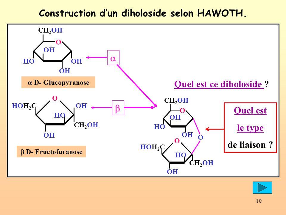 10 Construction dun diholoside selon HAWOTH. OH CH 2 OH O OH HOOH D- Glucopyranose HO HOH 2 C O OH CH 2 OH D- Fructofuranose Quel est ce diholoside ?Q