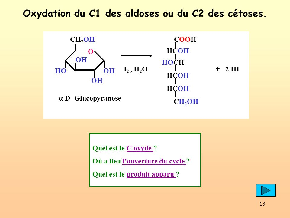 13 Oxydation du C1 des aldoses ou du C2 des cétoses.