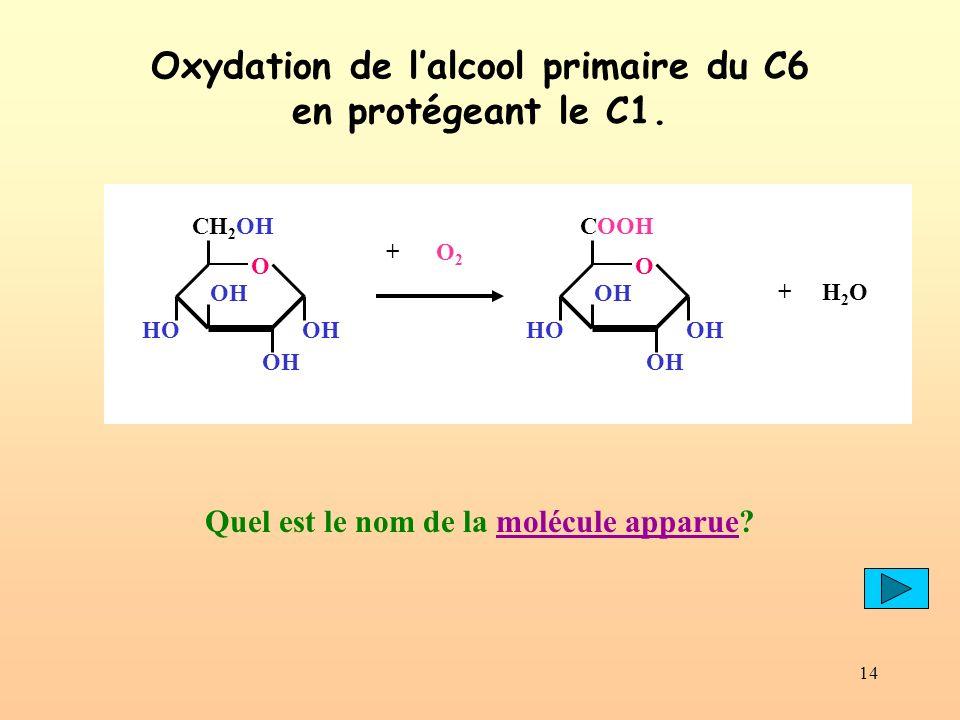 14 Oxydation de lalcool primaire du C6 en protégeant le C1. Quel est le nom de la molécule apparue?molécule apparue OH CH 2 OH O OH HOOH + O 2 OH COOH