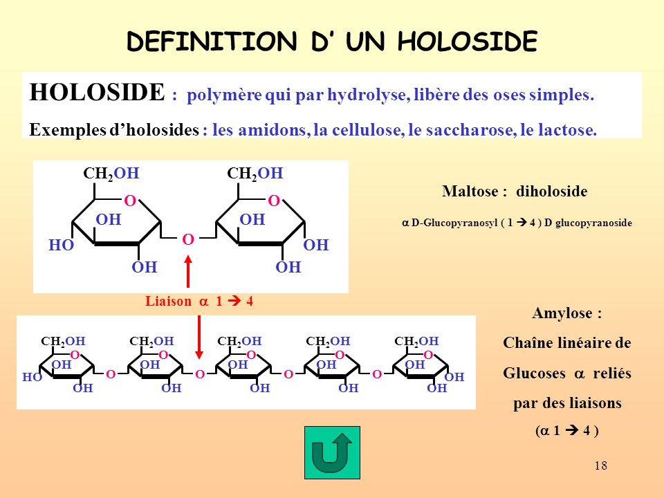 18 DEFINITION D UN HOLOSIDE HOLOSIDE : polymère qui par hydrolyse, libère des oses simples. Exemples dholosides : les amidons, la cellulose, le saccha