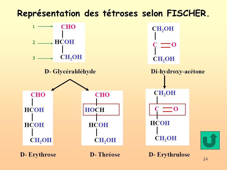 24 Représentation des tétroses selon FISCHER. Di-hydroxy-acétone CHO HCOH CH 2 OH C O CH 2 OH CHO HCOH CH 2 OH HCOH CHO HOCH CH 2 OH HCOH D- Glycérald